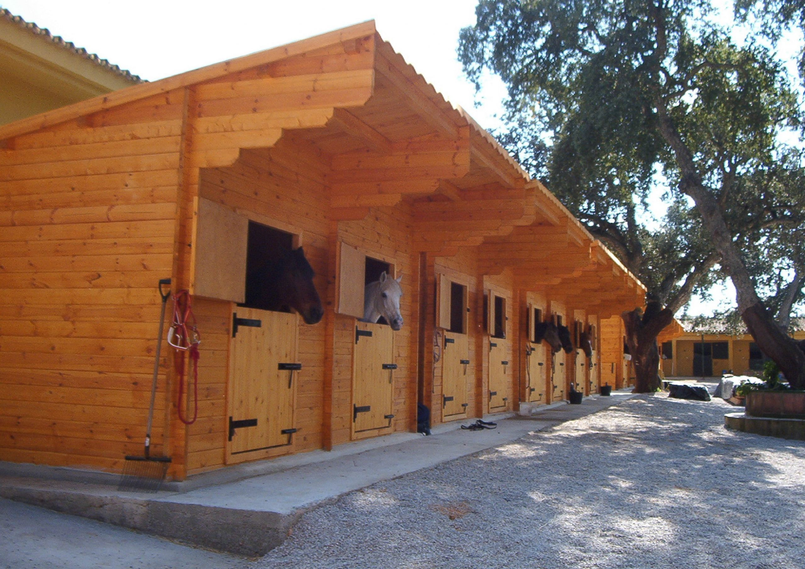 horse-stables